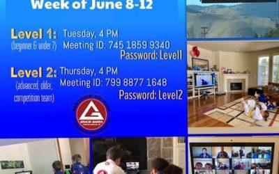 This weeks Zoom classes